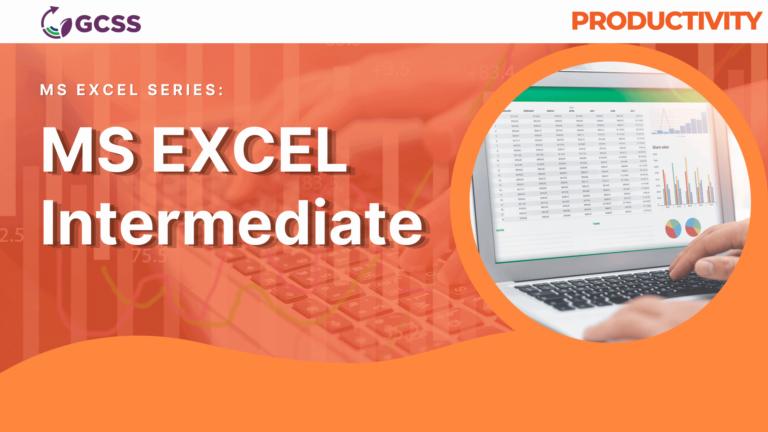 MS Excel Intermediate